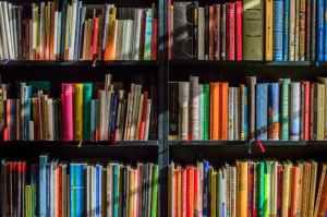 books-bookstore-book-reading-159711